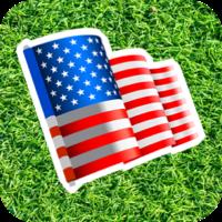 patriotic button image